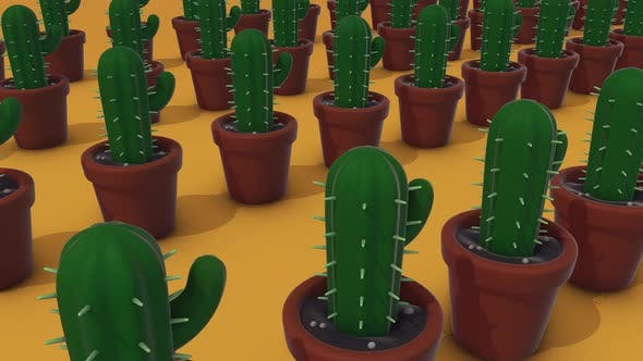 A Lot Of Cactus In A Pots 4k