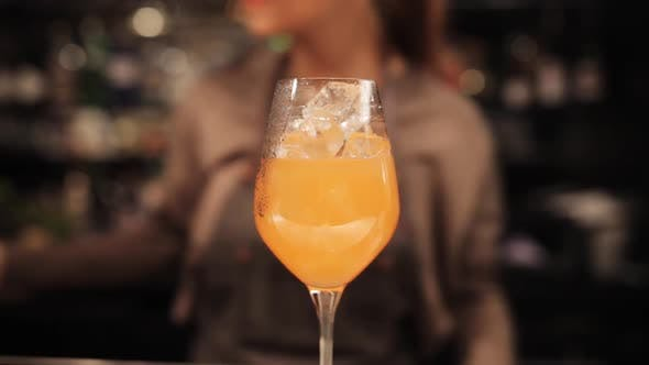 Thumbnail for Barmaid with Glass and Stirrer Preparing Cocktail