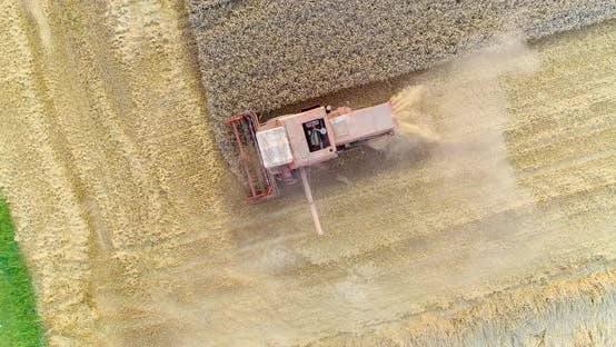 Thumbnail for Harvesting. Combine Harvester Harvesting Wheat