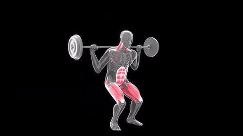 Barbell Parallel Squat