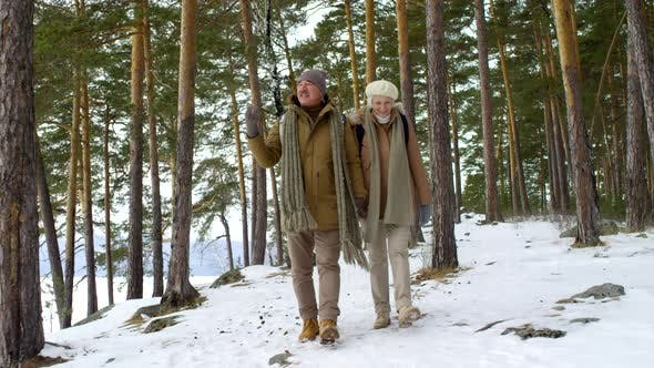 Thumbnail for Affectionate Elderly Couple Walking Together Outdoors in Winter