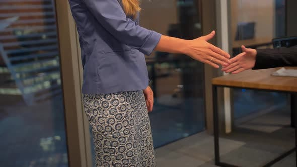 Thumbnail for Two Happy Young Businesswomen Shake Hands