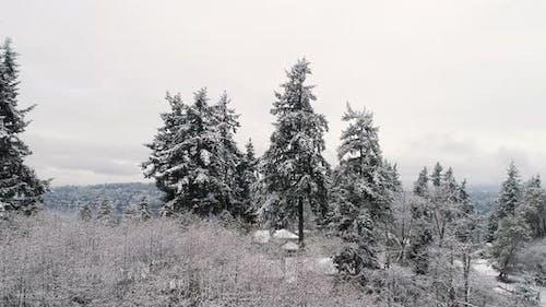Fresh Snowfall On Residental Suburban Neighborhood