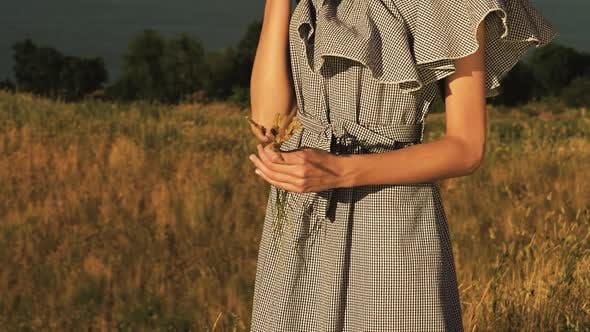 Thumbnail for Girl with Wheat Spikes in Her Hands Against a Beautiful Landscape. Slow Motion