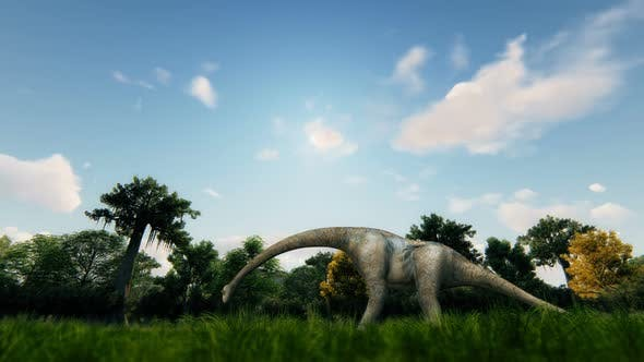 Thumbnail for Dinosaur and Forest