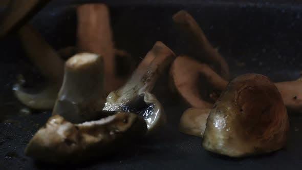 Thumbnail for Mushroom in the Pan
