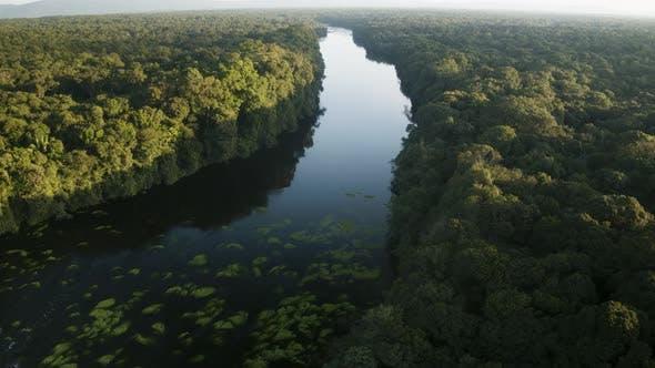 Thumbnail for Amazon River View