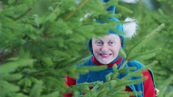 Thumbnail for Christmas elf smiling behind branches
