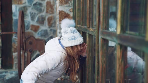 Cover Image for Little Girl with an Envelope in Her Hand is Peeping Through the Window to Elves