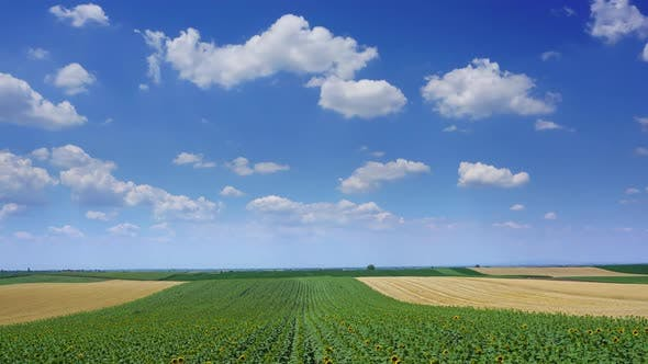 Thumbnail for Rural Landscape with Fields Stripes in Serbia