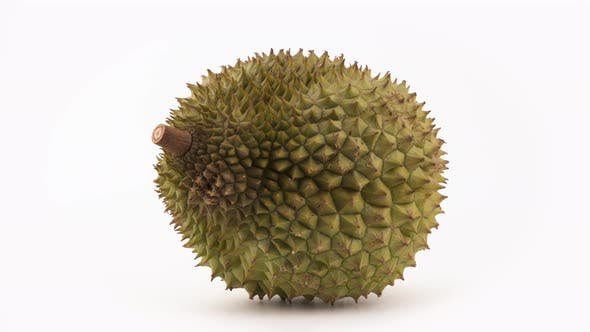 Thumbnail for One Whole Durian Fruit Rotating. Isolated on the White Background