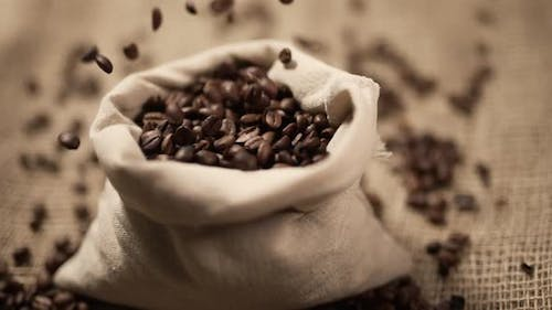 Coffee Beans are Falling on Burlap in Slow Motion