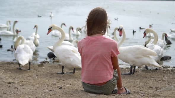 Thumbnail for Little Girl Sitting on the Beach with Swans