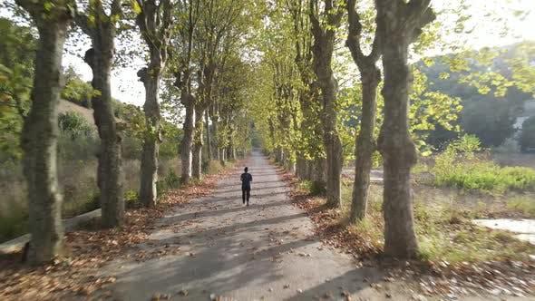 Autumn Park Sport Running
