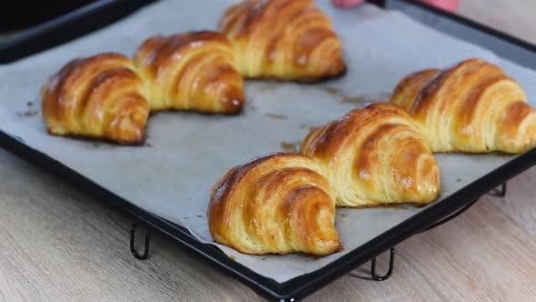 Fresh baked croissants on baking sheet