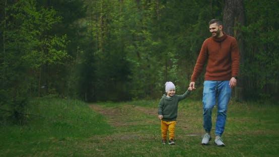 Thumbnail for Ein junger Vater und Sohn Spaziergang im Park, der Hände hält. Ein Mann und ein Junge spazieren in einem Pinienwald