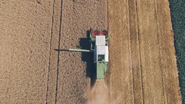 02 Green Combine Harvester Harvesting Wheat On A Field