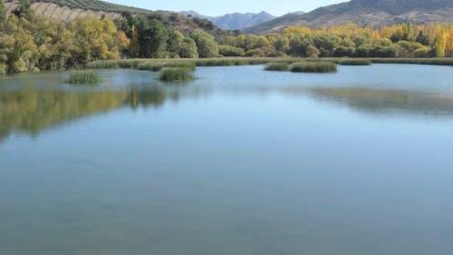 Herbstliche Landschaft und Damm in einem Sumpf