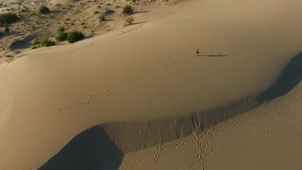 Thumbnail for Walking On The Sand