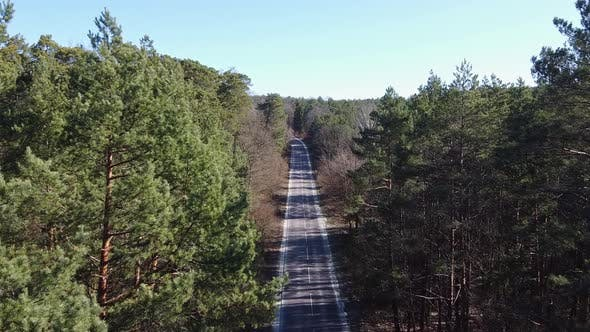 Cover Image for Aerial Country Road in Forest in the Evening at Twilight