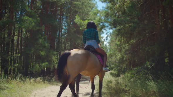 Thumbnail for Riding Instructor Leading Horse with Rider Woman