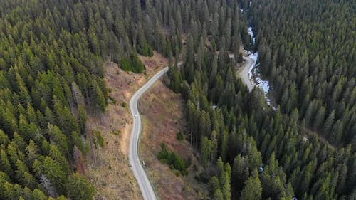 Car driving on a mountain forest road in Alberta Canada