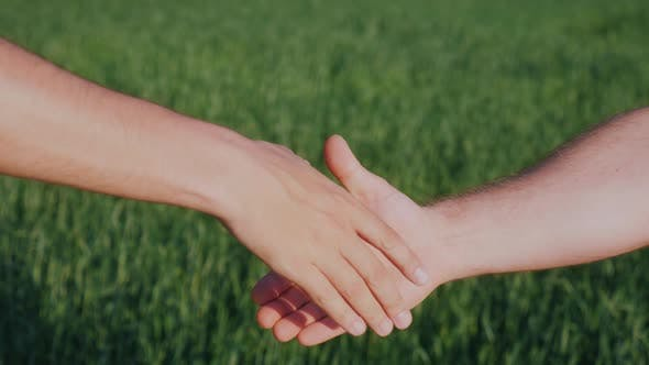 Thumbnail for A Firm Handshake of Two Men's Hands. The Deal of Two Farmers and Agribusiness Concept