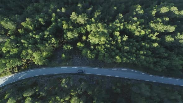 Thumbnail for White Car Is Going on Country Road in Green Forest in Norway. Aerial Vertical Top-Down View