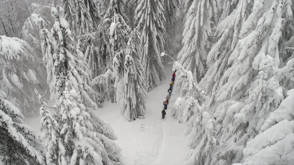 Thumbnail for Aerial View Of People Hiking On A Spectacular Winter Day