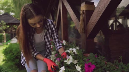 Florist in Protective Gloves Cutting Dry Leaves on Plants