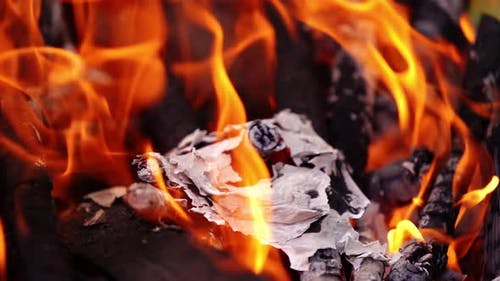Embers of paper in fire