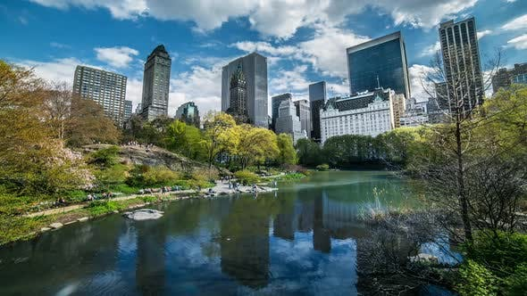Thumbnail for Central Park In New York City