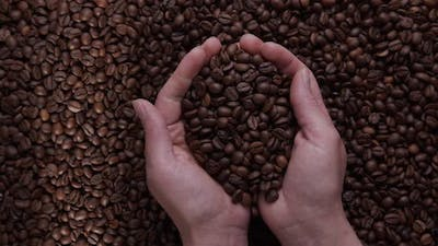 farmer's hand inspects freshly roasted coffee beans