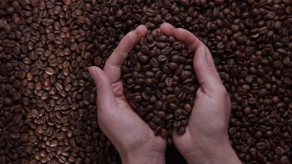 Landwirt Hand inspiziert frisch geröstete Kaffeebohnen