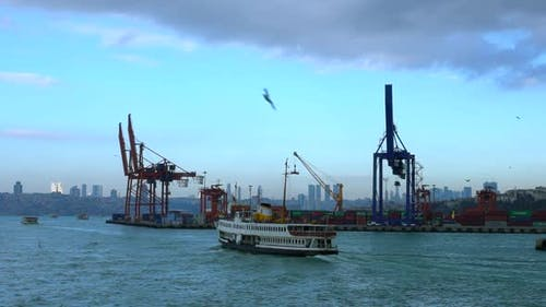 Harbor And Export