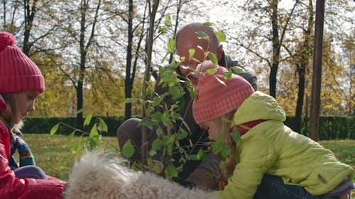 Happy Family Planting Tree