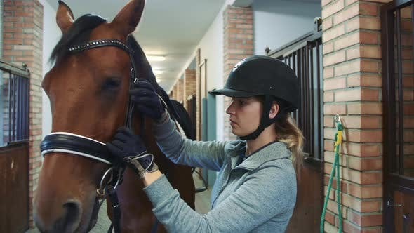 Thumbnail for Young Woman Tightening Bridle on Horse