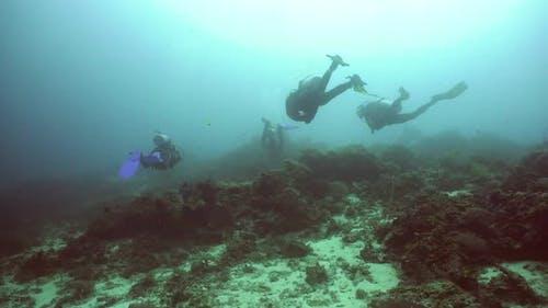 Scuba Divers Underwater