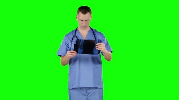 Doctor Analyzing X-ray. Green Screen
