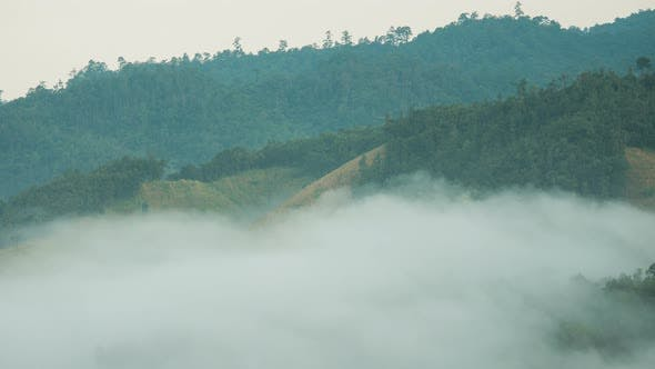Thumbnail for Fog Moving Above Mountain