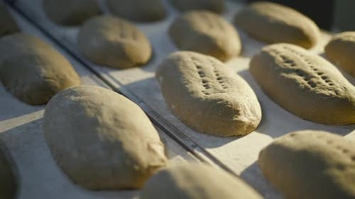 Close View of Making Bread Process By Baker on a Bakery Factory