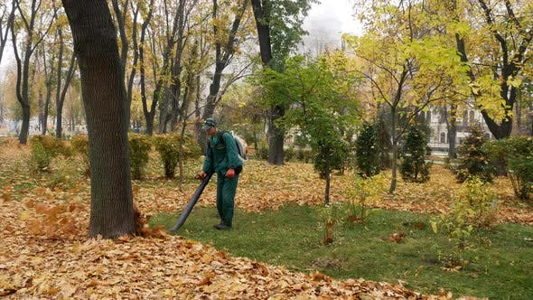 Thumbnail for Worker Blowing the Autumn Leaves with a Leaf Blower. Fallen Leaves Cleaning