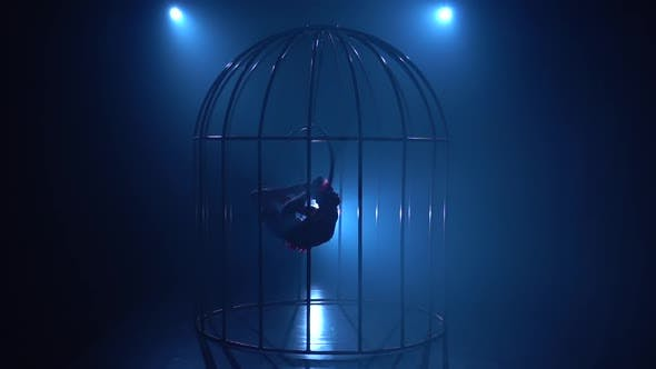Thumbnail for Silhouette of a Girl Spinning on a Hoop on Stage in a Cages. Blue Smoke Background. Silhouette. Slow