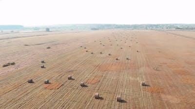 Rural haystacks on grass field