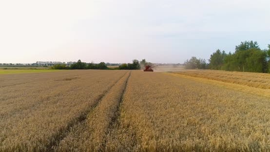 Thumbnail for Agriculture - Combine Harvester Harvesting Wheat