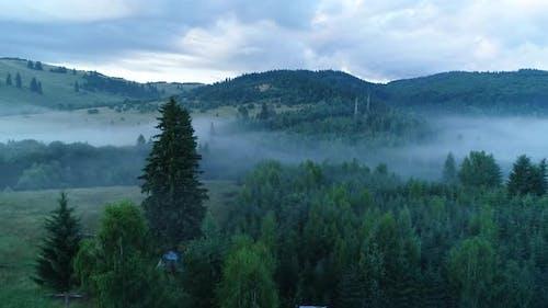 Wild Fog Near To  House 4k