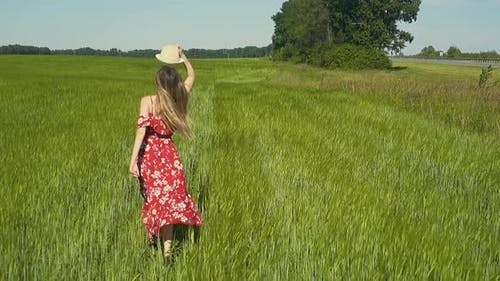 Slow Motion Young Girl Runs Across Green Field in Red Dress That Flutters in the Wind She Takes Off