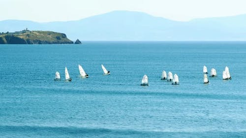 Sailboat Training