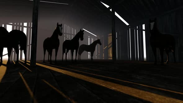 Thumbnail for Horses In The Stable