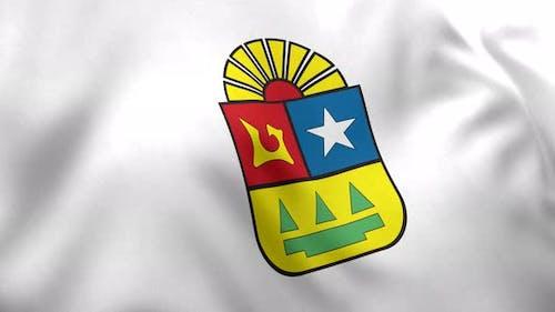 Quintana Roo Flag (Mexico) - 4K